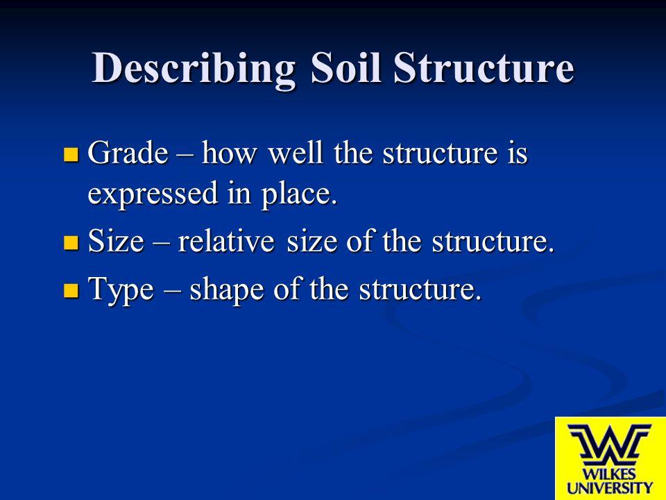 Describing Soil Structure Grade – how well the structure is expressed in place. Grade – how well the structure is expressed in place. Size – relative