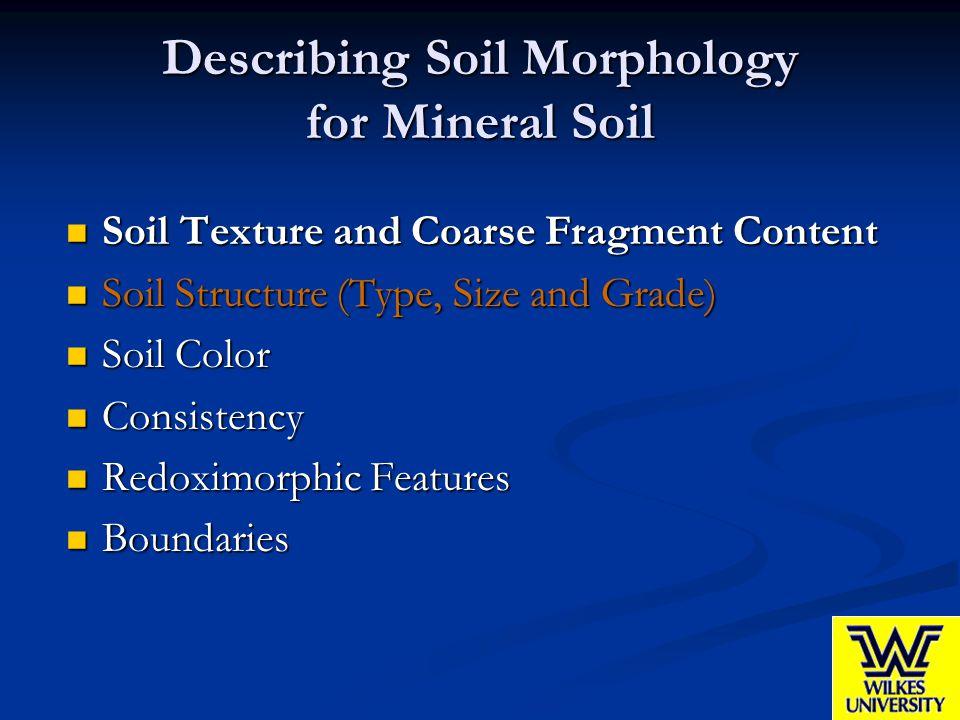Describing Soil Morphology for Mineral Soil Soil Texture and Coarse Fragment Content Soil Texture and Coarse Fragment Content Soil Structure (Type, Si