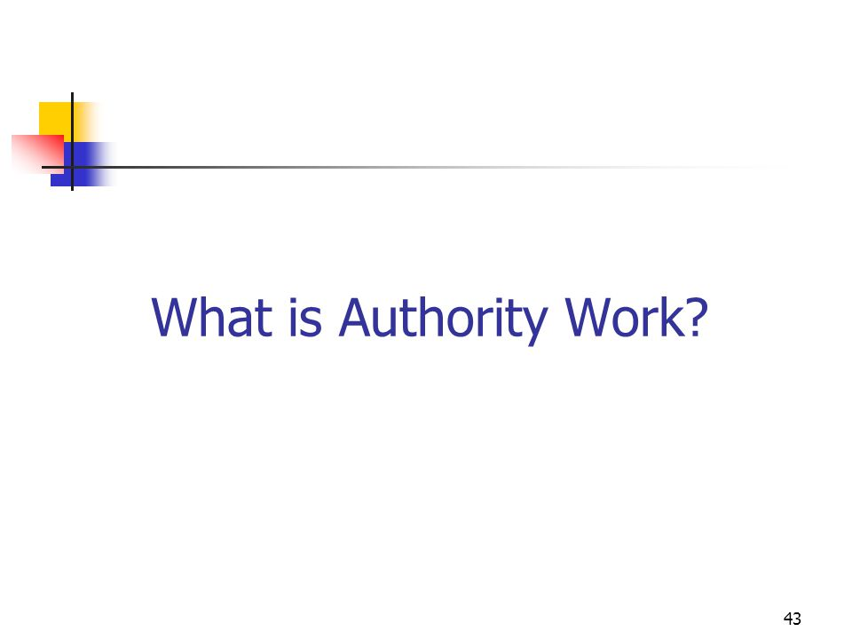43 What is Authority Work?