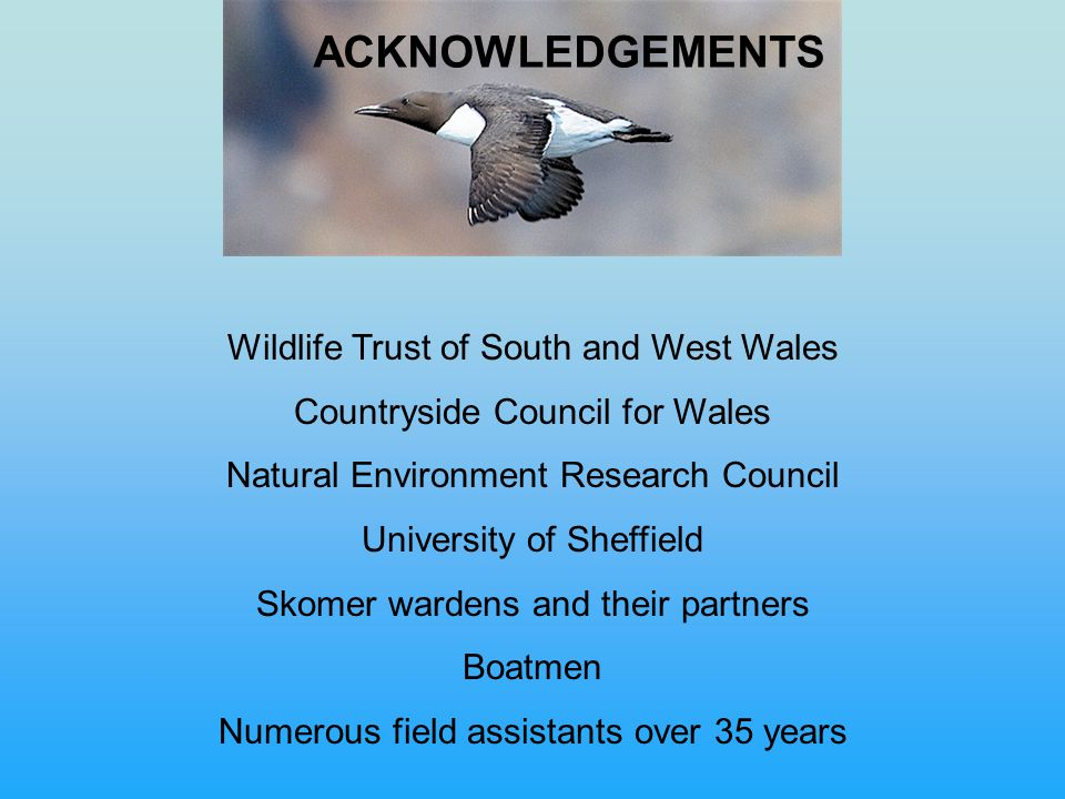 Wildlife Trust of South and West Wales Countryside Council for Wales Natural Environment Research Council University of Sheffield Skomer wardens and their partners Boatmen Numerous field assistants over 35 years ACKNOWLEDGEMENTS