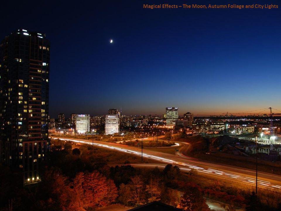 Magical Effects – The Moon, Autumn Foliage and City Lights