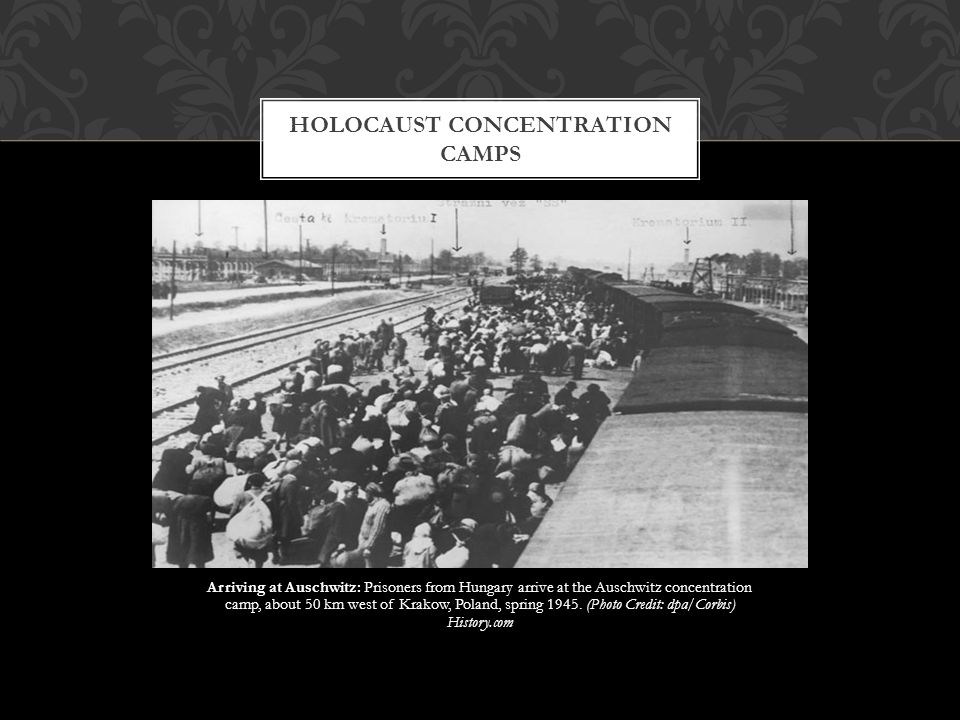 Arriving at Auschwitz: Prisoners from Hungary arrive at the Auschwitz concentration camp, about 50 km west of Krakow, Poland, spring 1945. (Photo Cred