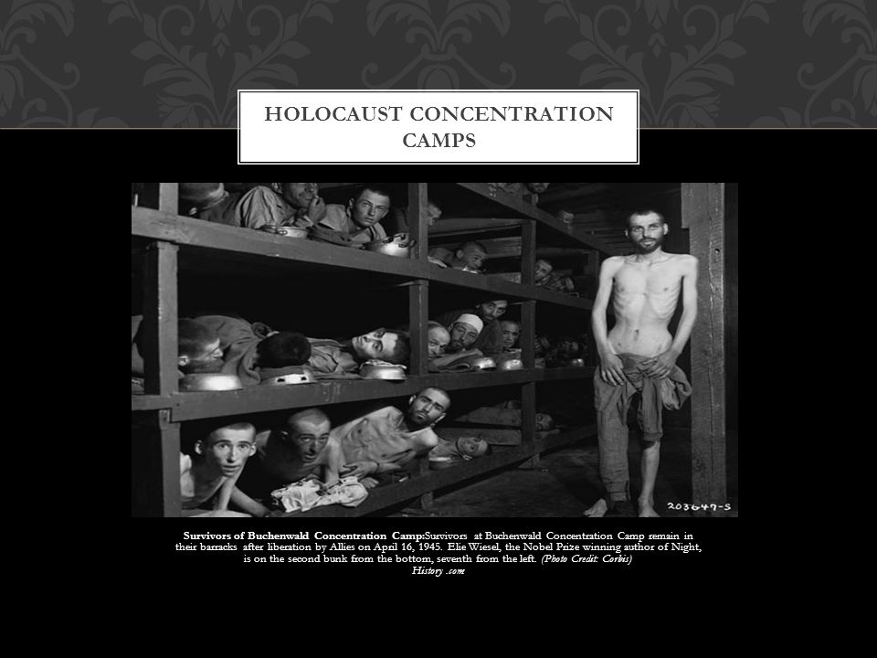 Survivors of Buchenwald Concentration Camp:Survivors at Buchenwald Concentration Camp remain in their barracks after liberation by Allies on April 16,