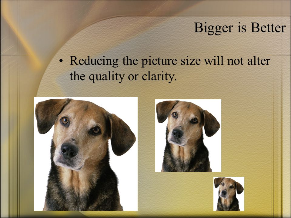 Bigger is Better Reducing the picture size will not alter the quality or clarity.