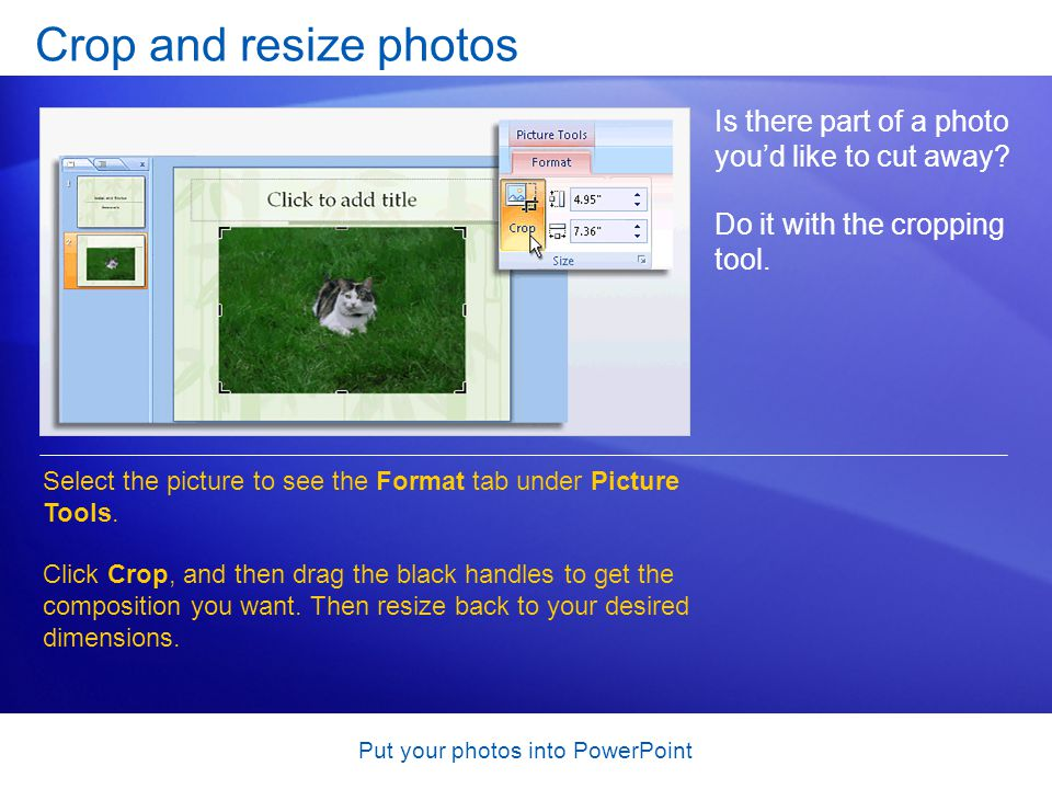 Put your photos into PowerPoint Crop and resize photos Is there part of a photo youd like to cut away.