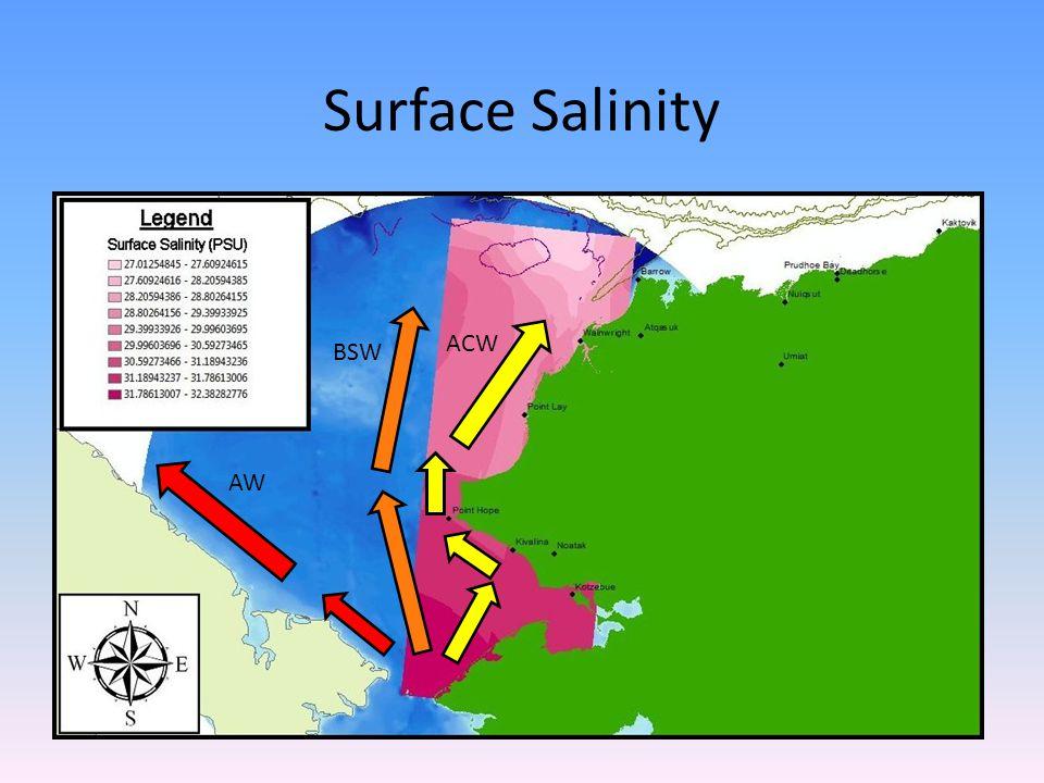 Surface Salinity AW ACW BSW