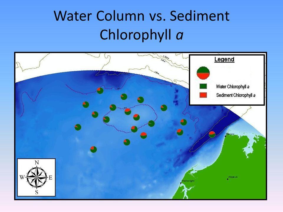 Water Column vs. Sediment Chlorophyll a