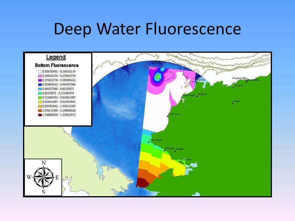 Deep Water Fluorescence