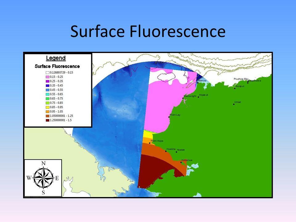 Surface Fluorescence