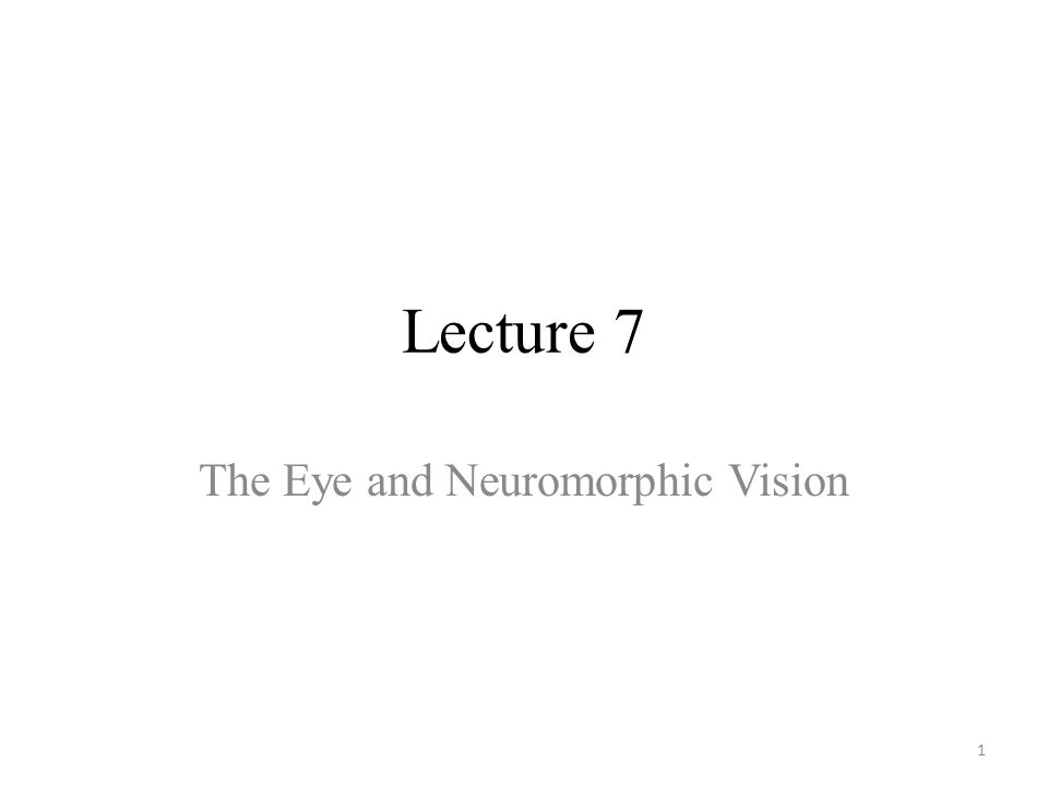 Lecture 7 The Eye and Neuromorphic Vision 1