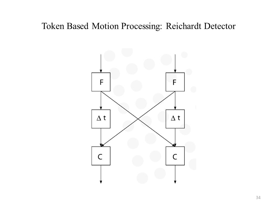 Token Based Motion Processing: Reichardt Detector 34