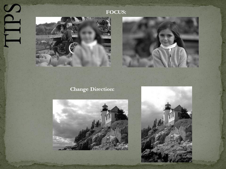 FOCUS: Change Direction: