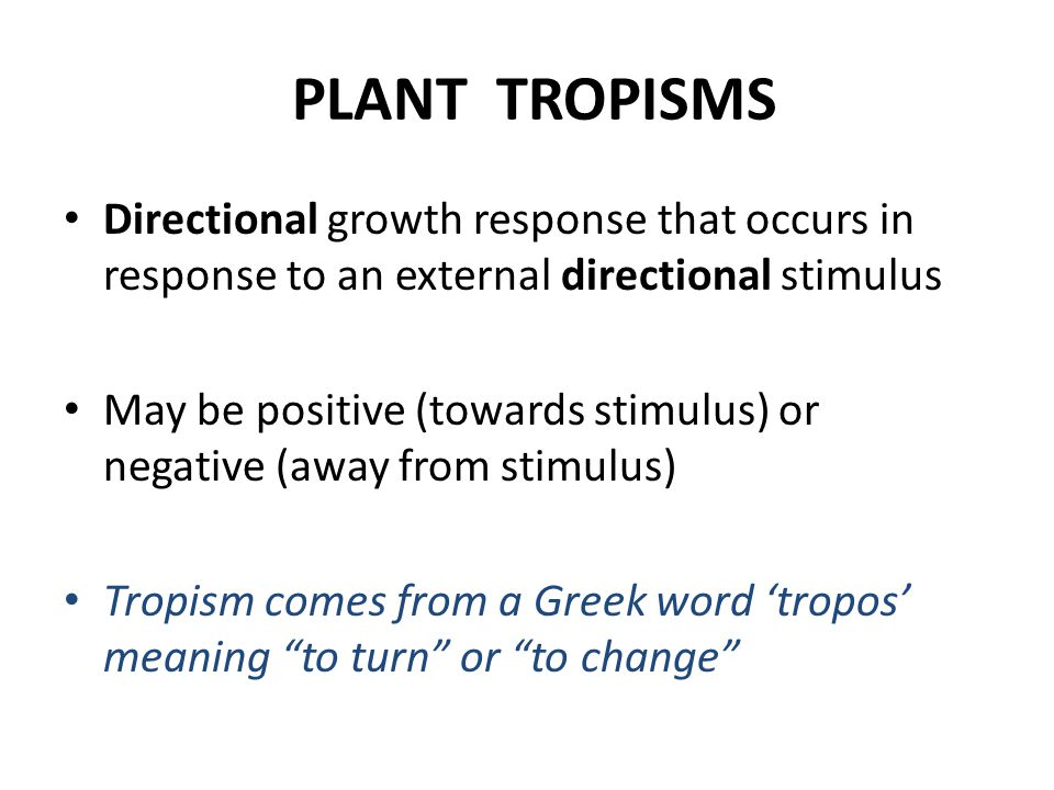 PLANT TROPISMS Directional growth response that occurs in response to an external directional stimulus May be positive (towards stimulus) or negative