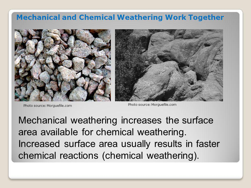 The most important factors for the rate (speed) of weathering are 1. rock type; and 2. climate. Rate of Weathering Photo source: Morguefile.com