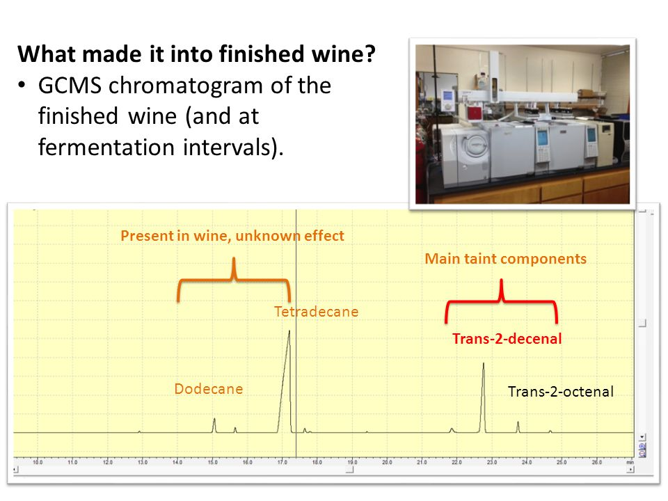 Tetradecane Trans-2-decenal Dodecane Trans-2-octenal What made it into finished wine.