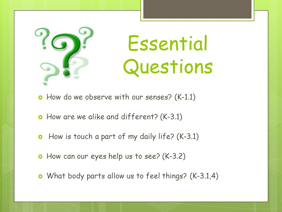 Essential Questions How do we observe with our senses? (K-1.1) How are we alike and different? (K-3.1) How is touch a part of my daily life? (K-3.1) H