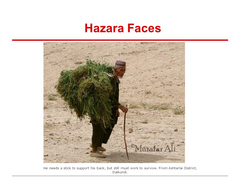 Hazara Faces He needs a stick to support his back, but still must work to survive. From Ashtarlai District, Daikundi.