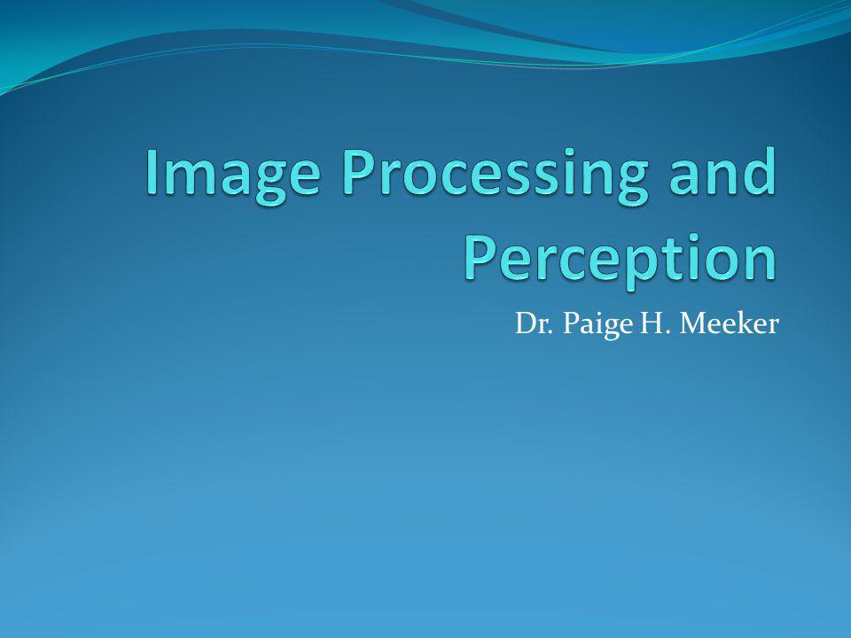 Dr. Paige H. Meeker