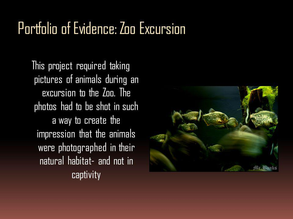 Portfolio of Evidence: Zoo Excursion This project required taking pictures of animals during an excursion to the Zoo. The photos had to be shot in suc