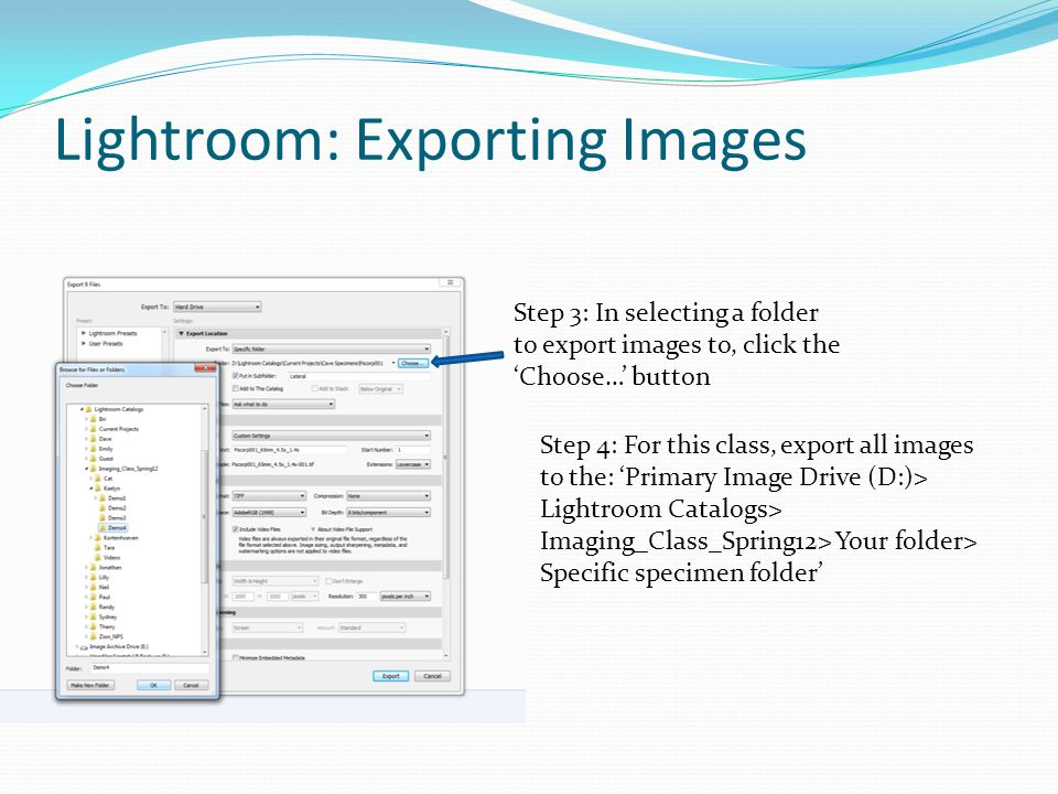 Step 3: In selecting a folder to export images to, click the Choose… button Step 4: For this class, export all images to the: Primary Image Drive (D:)> Lightroom Catalogs> Imaging_Class_Spring12> Your folder> Specific specimen folder