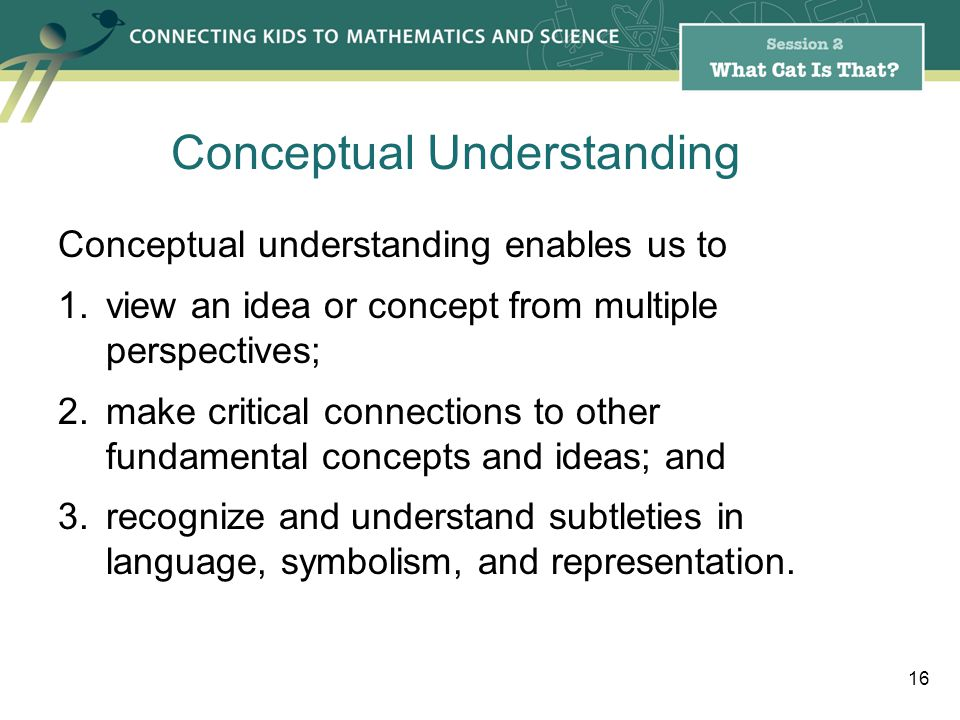 Conceptual understanding enables us to 1.view an idea or concept from multiple perspectives; 2.make critical connections to other fundamental concepts and ideas; and 3.recognize and understand subtleties in language, symbolism, and representation.