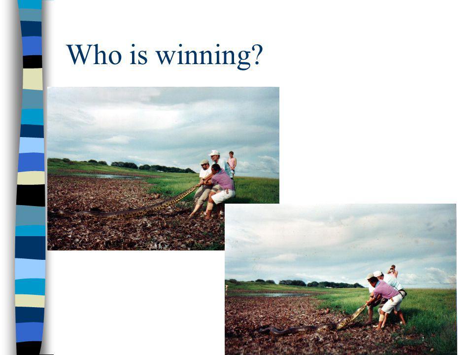 Who is winning?