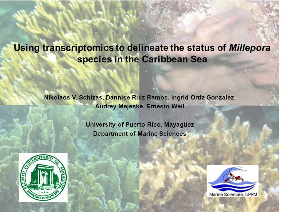 Using transcriptomics to delineate the status of Millepora species in the Caribbean Sea Nikolaos V. Schizas, Dannise Ruiz Ramos, Ingrid Ortiz Gonzalez