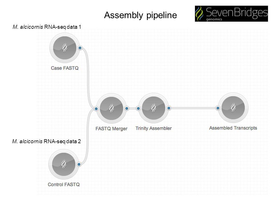 Assembly pipeline M. alcicornis RNA-seq data 1 M. alcicornis RNA-seq data 2