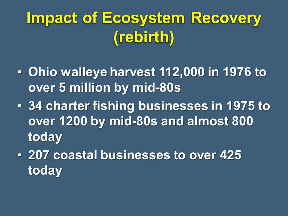 Impact of Ecosystem Recovery (rebirth) Ohio walleye harvest 112,000 in 1976 to over 5 million by mid-80sOhio walleye harvest 112,000 in 1976 to over 5 million by mid-80s 34 charter fishing businesses in 1975 to over 1200 by mid-80s and almost 800 today34 charter fishing businesses in 1975 to over 1200 by mid-80s and almost 800 today 207 coastal businesses to over 425 today207 coastal businesses to over 425 today