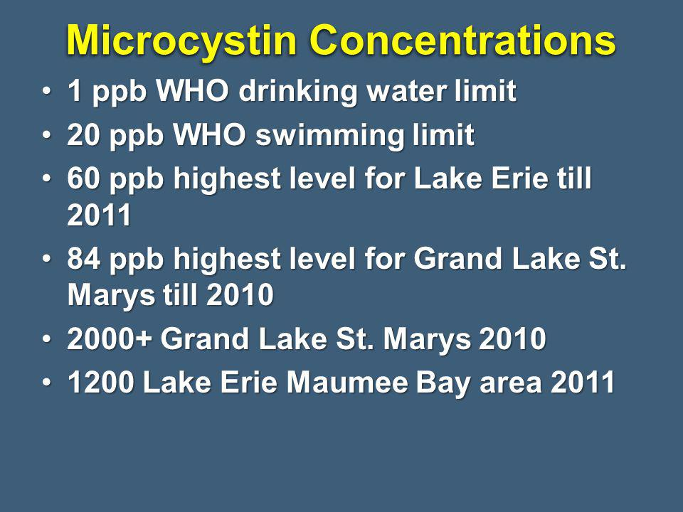 1 ppb WHO drinking water limit1 ppb WHO drinking water limit 20 ppb WHO swimming limit20 ppb WHO swimming limit 60 ppb highest level for Lake Erie till 201160 ppb highest level for Lake Erie till 2011 84 ppb highest level for Grand Lake St.