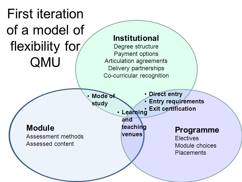 Profiles of flexibility at QMU Development of a model to: help map examples and aspects of flexibility identify areas in which we could promote further flexibility for the range of students and their needs.