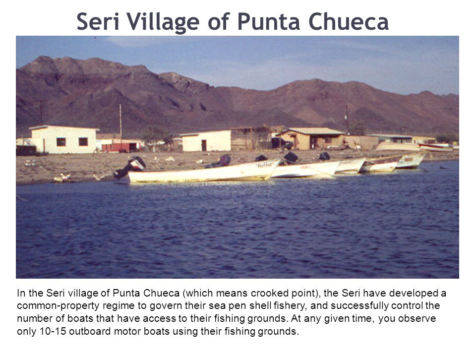 Seri Village of Punta Chueca In the Seri village of Punta Chueca (which means crooked point), the Seri have developed a common-property regime to govern their sea pen shell fishery, and successfully control the number of boats that have access to their fishing grounds.