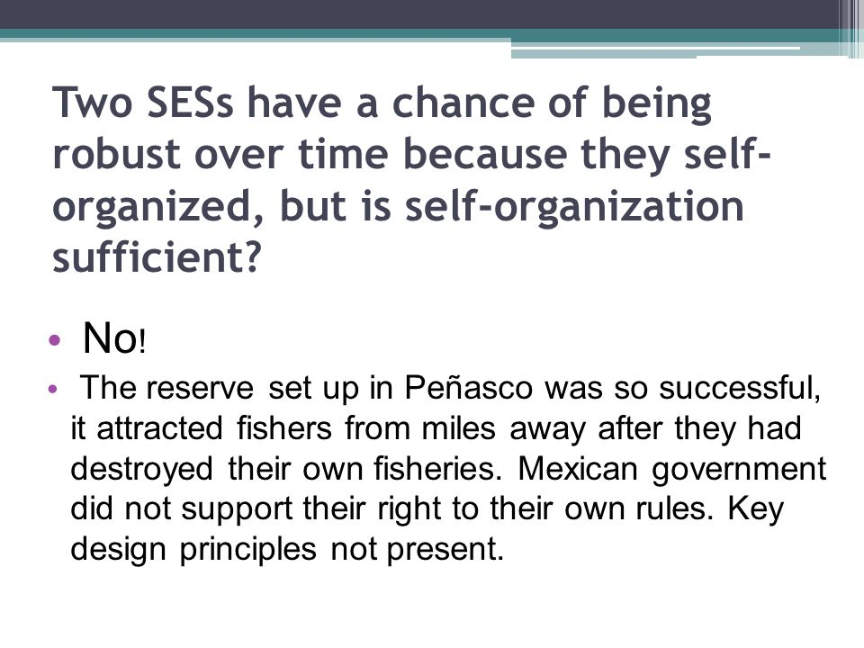 Two SESs have a chance of being robust over time because they self- organized, but is self-organization sufficient.
