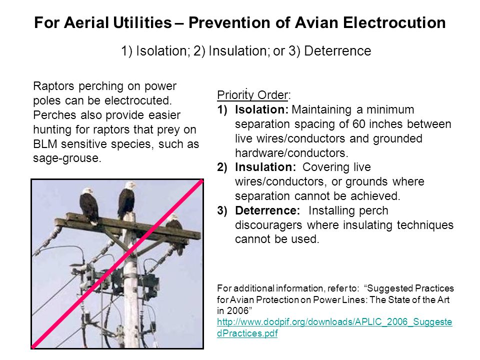 For Aerial Utilities – Prevention of Avian Electrocution 1) Isolation; 2) Insulation; or 3) Deterrence Raptors perching on power poles can be electroc
