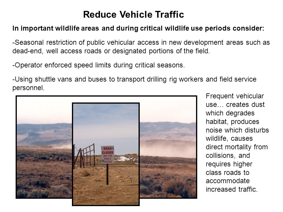 In important wildlife areas and during critical wildlife use periods consider: -Seasonal restriction of public vehicular access in new development are