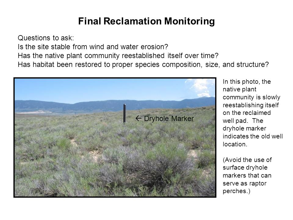 Final Reclamation Monitoring Questions to ask: Is the site stable from wind and water erosion? Has the native plant community reestablished itself ove