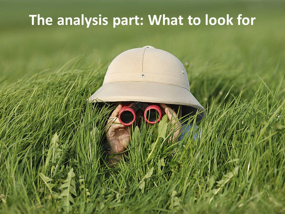 The analysis part: What to look for