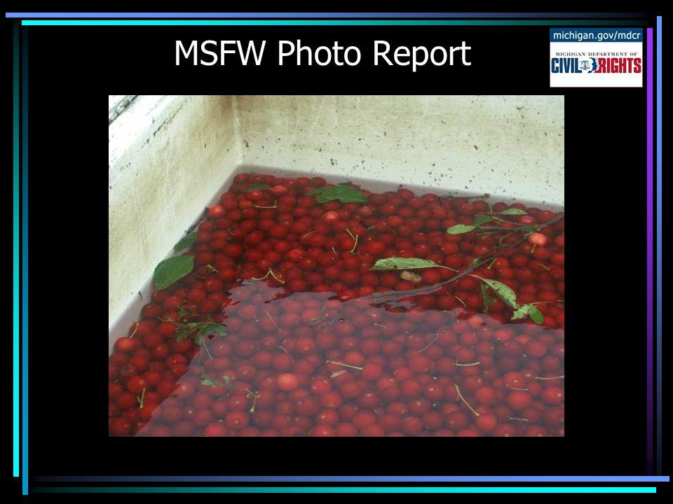 MSFW Photo Report