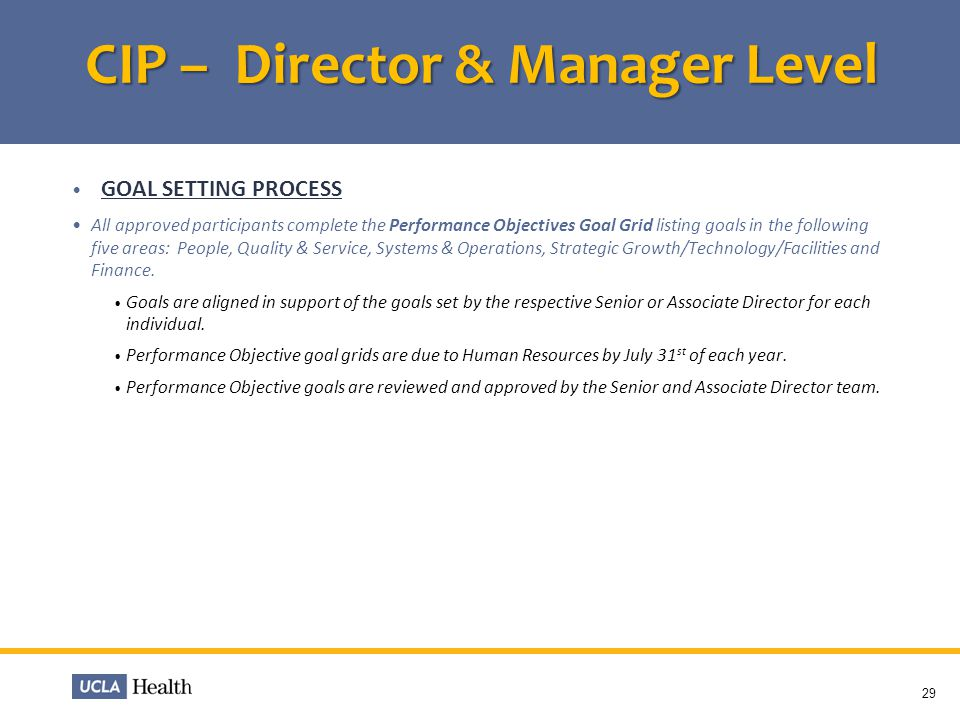 CIP – Director & Manager Level GOAL SETTING PROCESS All approved participants complete the Performance Objectives Goal Grid listing goals in the follo