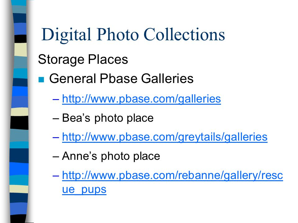 Digital Photo Collections Storage Places n General Pbase Galleries –http://www.pbase.com/gallerieshttp://www.pbase.com/galleries –Beas photo place –http://www.pbase.com/greytails/gallerieshttp://www.pbase.com/greytails/galleries –Annes photo place –http://www.pbase.com/rebanne/gallery/resc ue_pupshttp://www.pbase.com/rebanne/gallery/resc ue_pups