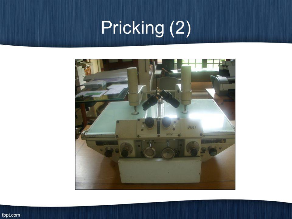 Pricking (2)