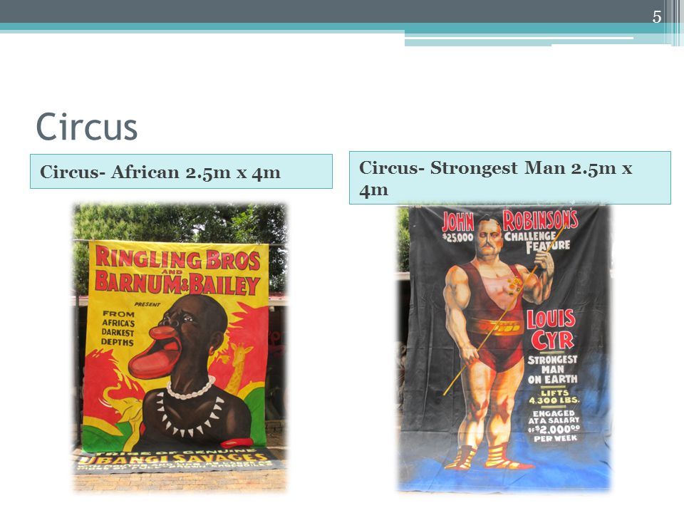 Circus Circus- African 2.5m x 4m Circus- Strongest Man 2.5m x 4m 5