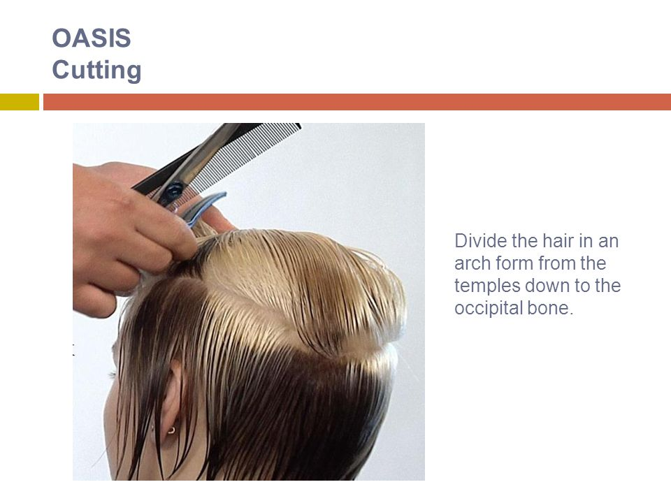 OASIS Cutting Divide the hair in an arch form from the temples down to the occipital bone.
