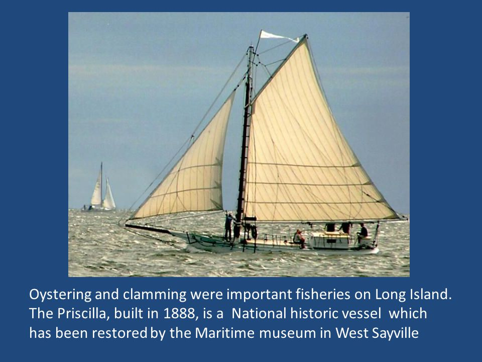 Oystering and clamming were important fisheries on Long Island.