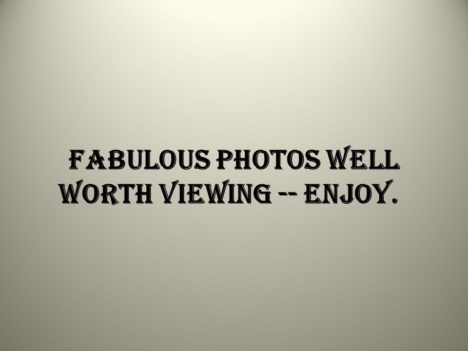 Fabulous photos well worth viewing -- enjoy.