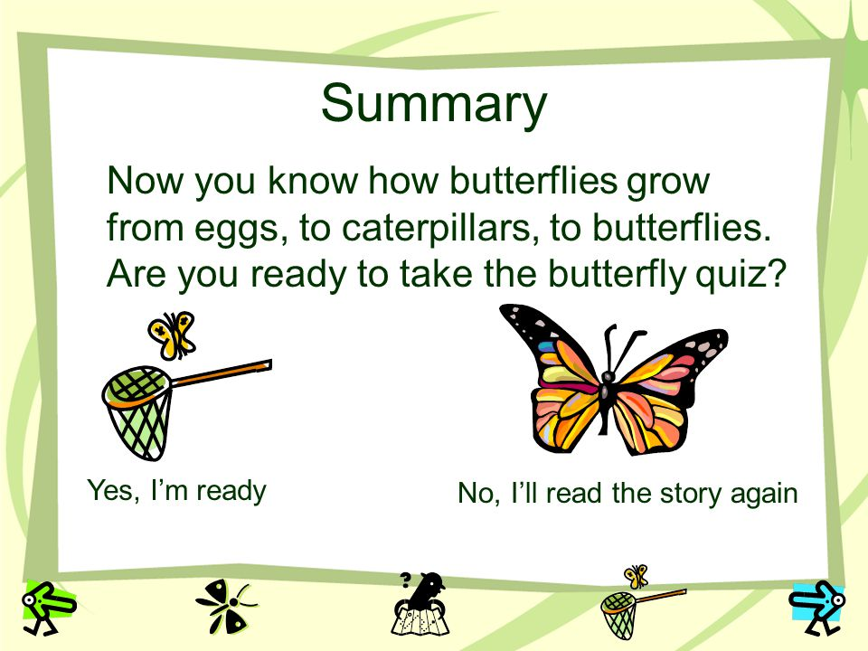 Summary Now you know how butterflies grow from eggs, to caterpillars, to butterflies. Are you ready to take the butterfly quiz? Yes, Im ready No, Ill
