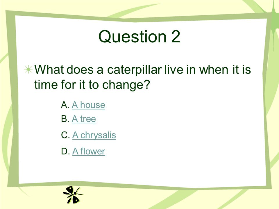 Question 2 What does a caterpillar live in when it is time for it to change? A. A houseA house B. A treeA tree C. A chrysalisA chrysalis D. A flowerA