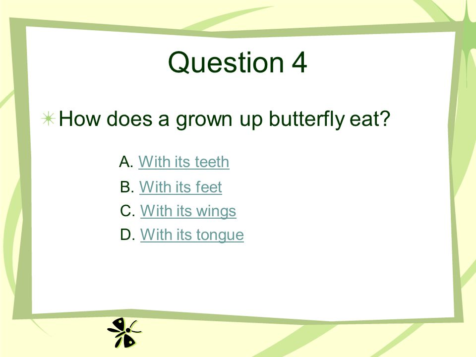 Question 4 How does a grown up butterfly eat? A. With its teethWith its teeth B. With its feetWith its feet C. With its wingsWith its wings D. With it