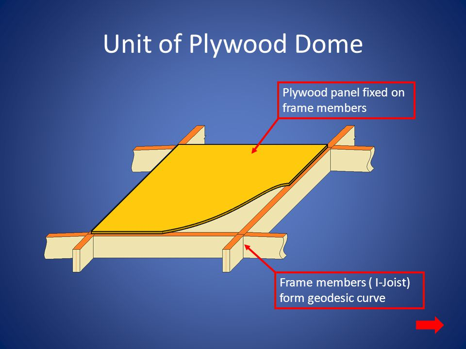 Plywood Dome surface Frame Member Creating a Dome