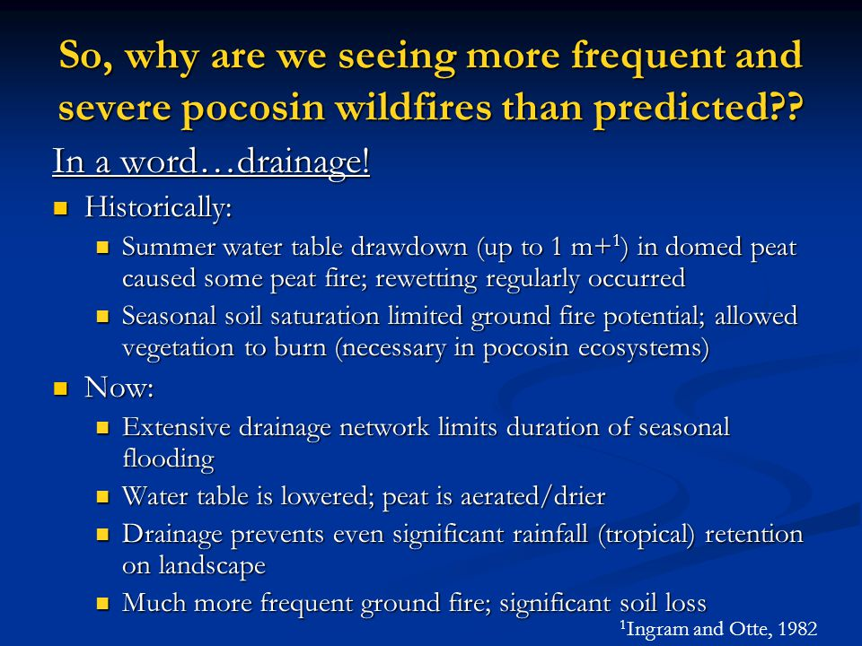 So, why are we seeing more frequent and severe pocosin wildfires than predicted?.